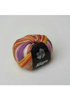Allegro Kleurnummer 007
