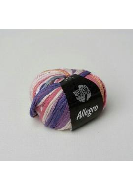 Allegro Kleurnummer 011