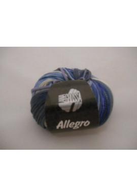 Allegro Kleurnummer 003