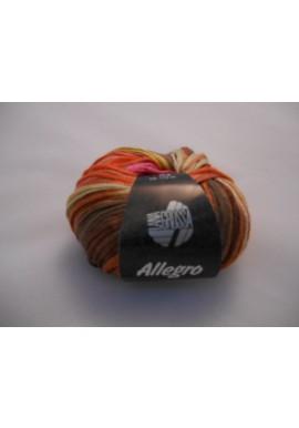 Allegro Kleurnummer 018