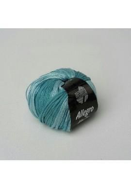 Allegro Unito Kleurnummer 105