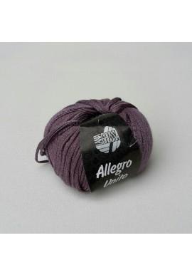 Allegro Unito Kleurnummer 106
