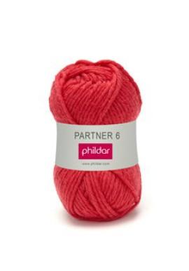 Partner 6 BRAISE Kleurnummer 0033 **
