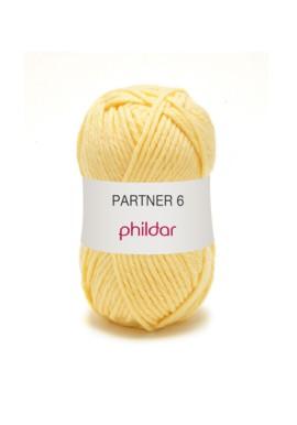 Partner 6 BRINDILLE Kleurnummer 0150 **