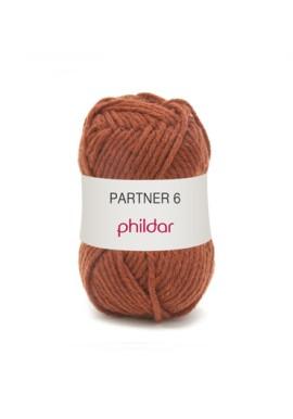 Partner 6 CHATAIGNE Kleurnummer 0038 **